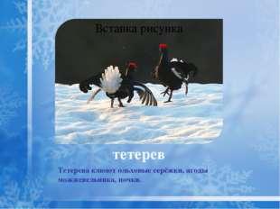 При наличии кормов птицы остаются на зиму, образуя смешанные стаи с воробьями