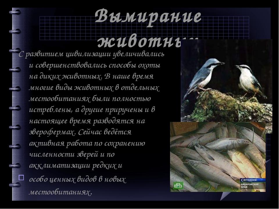 Вымирание животных С развитием цивилизации увеличивались и совершенствовались...