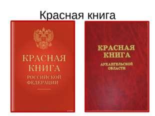 Красная книга Итак, где закреплен перечень редких охраняемых видов растений и