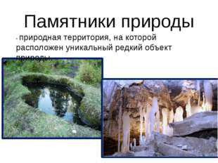 Памятники природы - природная территория, на которой расположен уникальный ре