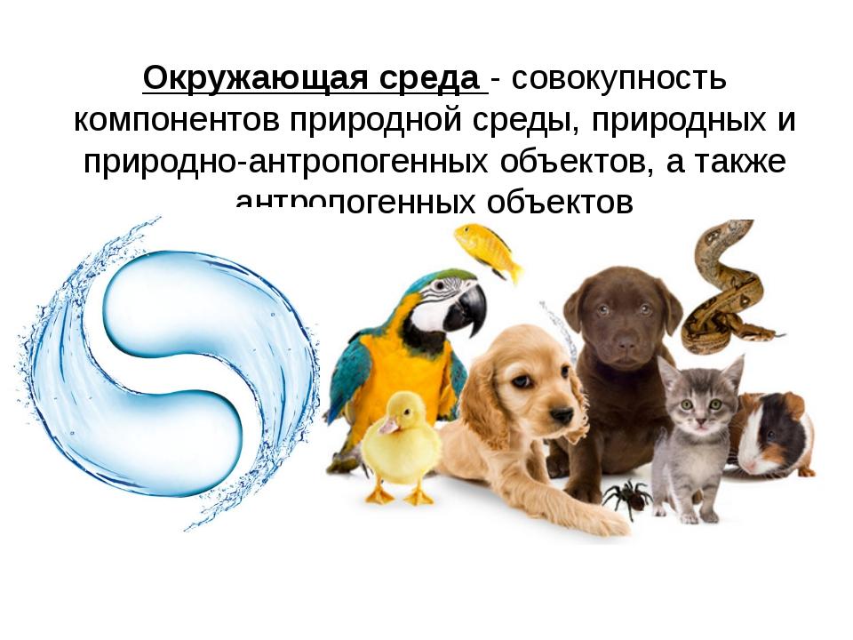 Статья 58. Конституции РФ Каждый обязан _______________ природу и окружающую...