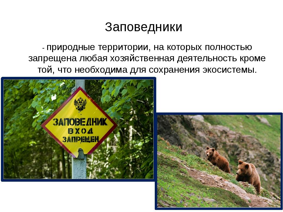 Заповедники - природные территории, на которых полностью запрещена любая хозя...