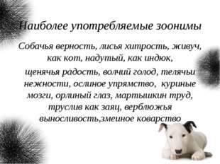 Наиболее употребляемые зоонимы Собачья верность, лисья хитрость, живуч, как к