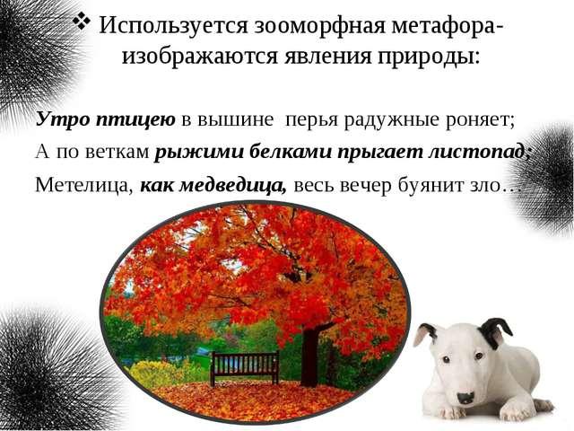 Используется зооморфная метафора- изображаются явления природы: Утро птицею в...
