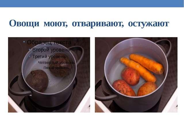 Овощи моют, отваривают, остужают