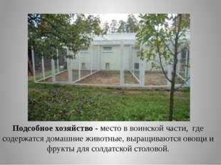 Подсобное хозяйство - место в воинской части, где содержатся домашние животны