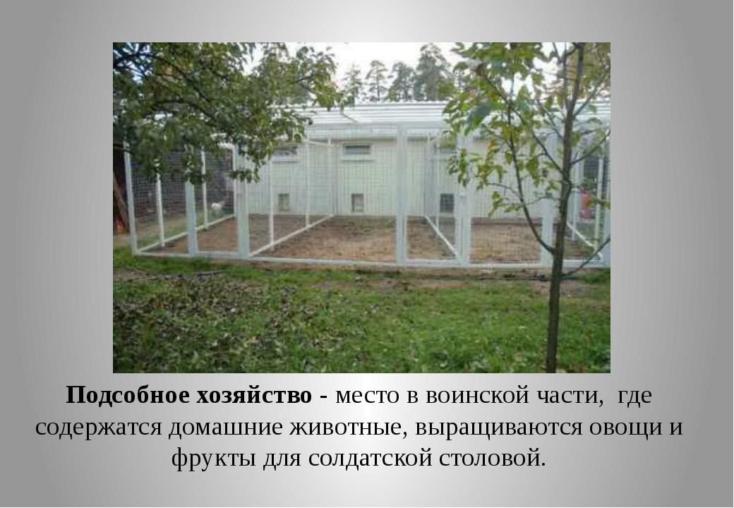 Подсобное хозяйство - место в воинской части, где содержатся домашние животны...