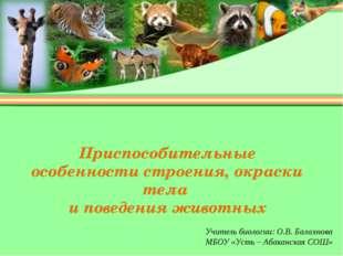 Приспособительные особенности строения, окраски тела и поведения животных Учи