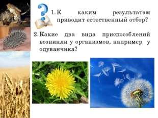 К каким результатам приводит естественный отбор? Какие два вида приспособлени
