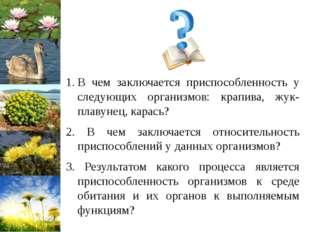 В чем заключается приспособленность у следующих организмов: крапива, жук-плав