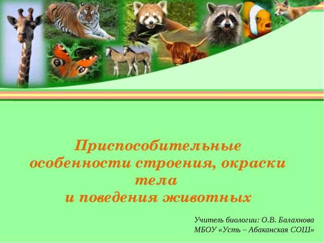 Приспособительные особенности строения, окраски тела и поведения животных Учи...
