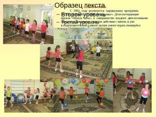 Школа мяча С 2001 года реализуется парциальная программа  М.Л.Волошиной «