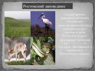 Ростовский заповедник Государственный природный заповедник «Ростовский» имеет