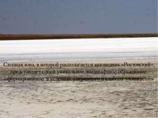 Степная зона, в которой располагается заповедник «Ростовский», представляет