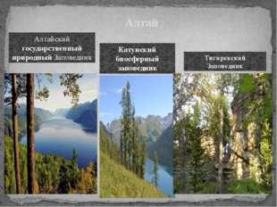 Алтай Алтайский государственный природный Заповедник Катунский биосферный зап