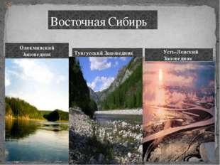 Восточная Сибирь Усть-Ленский Заповедник Тунгусский Заповедник Олекминский За