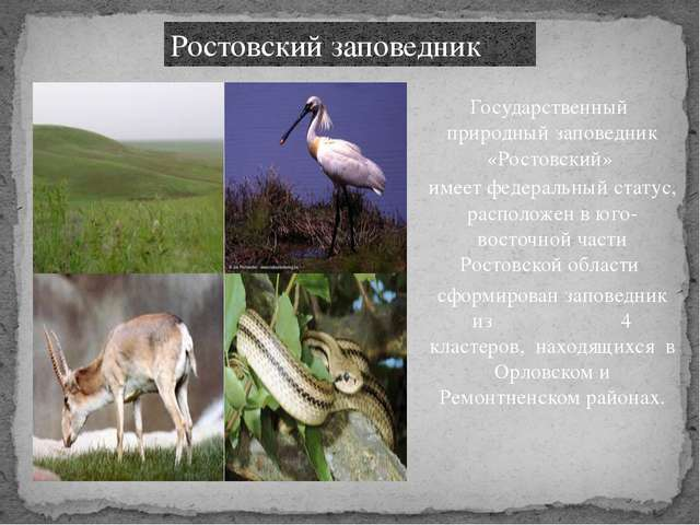 Ростовский заповедник Государственный природный заповедник «Ростовский» имеет...
