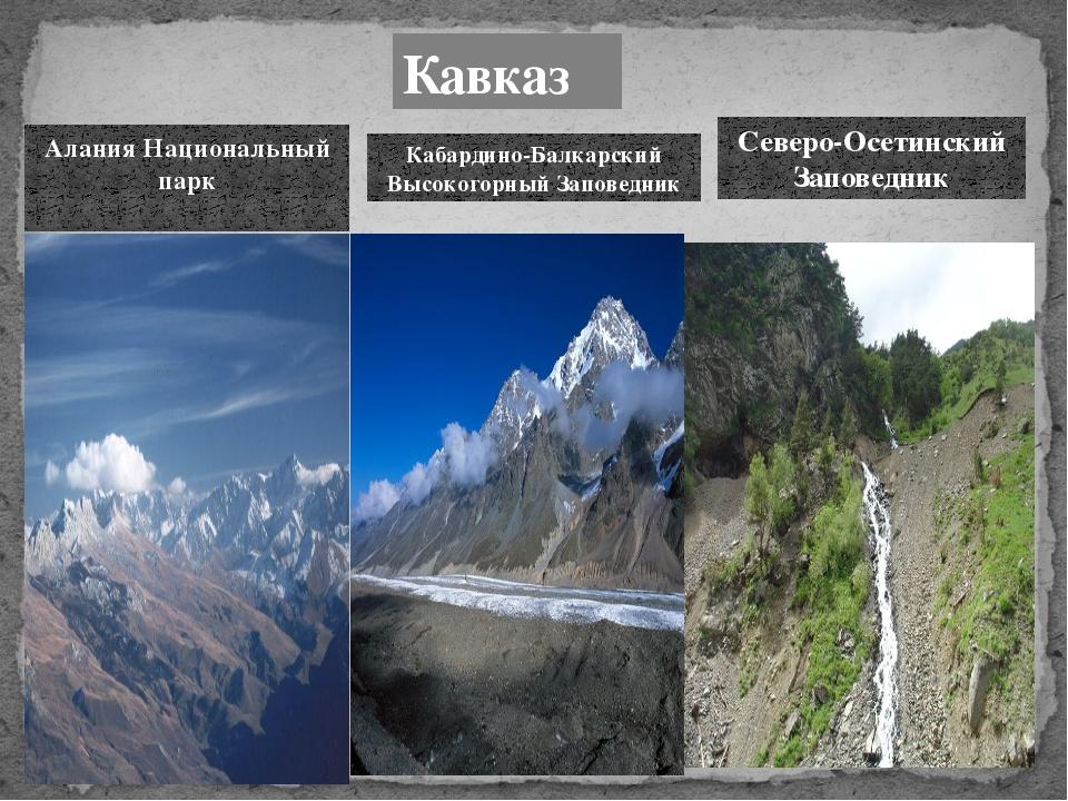 Кавказ Алания Национальный парк Кабардино-Балкарский Высокогорный Заповедник...