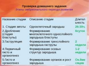 Проверка домашнего задания Этапы эмбрионального периода развития Название ста