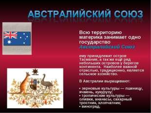 Всю территорию материка занимает одно государство Австралийский Союз ему прин