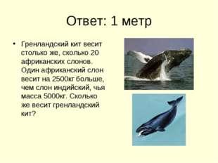 Ответ: 1 метр Гренландский кит весит столько же, сколько 20 африканских слоно