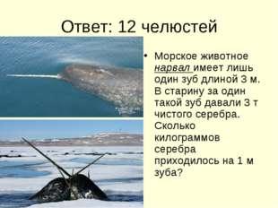Ответ: 12 челюстей Морское животное нарвал имеет лишь один зуб длиной 3 м. В