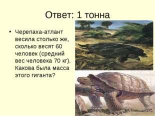 Ответ: 1 тонна Черепаха-атлант весила столько же, сколько весят 60 человек (с