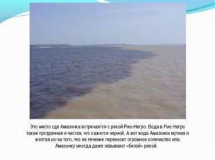 Это место где Амазонка встречается с рекой Рио-Негро. Вода в Рио Негро такая