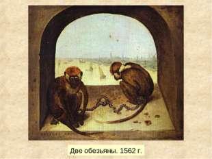 Две обезьяны. 1562 г.