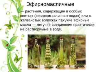 Эфирномасличные — растения, содержащие в особых клетках (эфирномасличных хода
