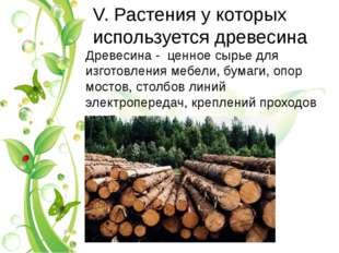 V. Растения у которых используется древесина Древесина - ценное сырье для изг