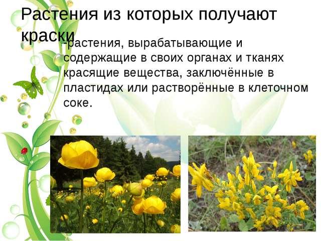 Растения из которых получают краски -растения, вырабатывающие и содержащие в...