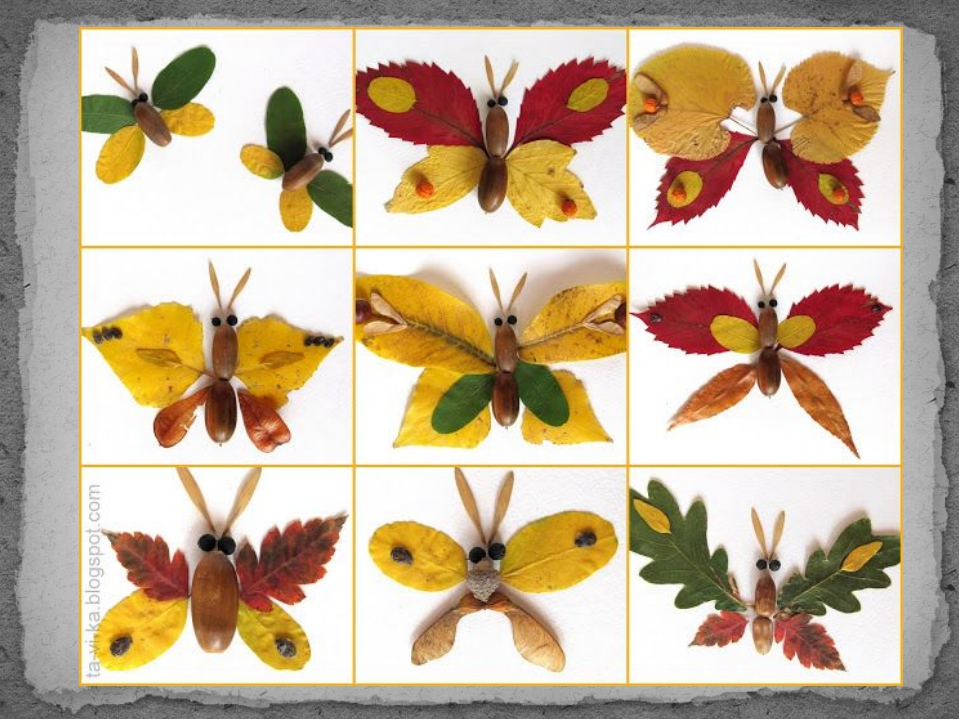 Бабочка из природных материалов своими руками фото