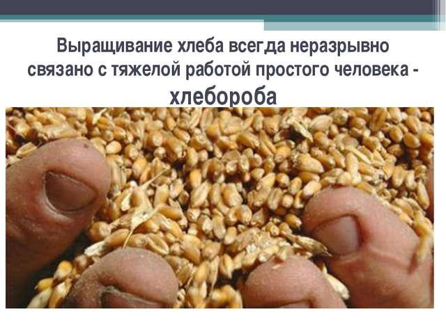 Выращивание хлеба всегда неразрывно связано с тяжелой работой простого челове...