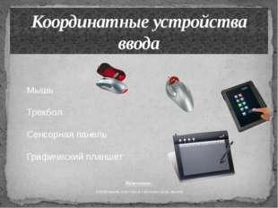 Назначение: управление курсором (указателем) мыши. Координатные устройства вв