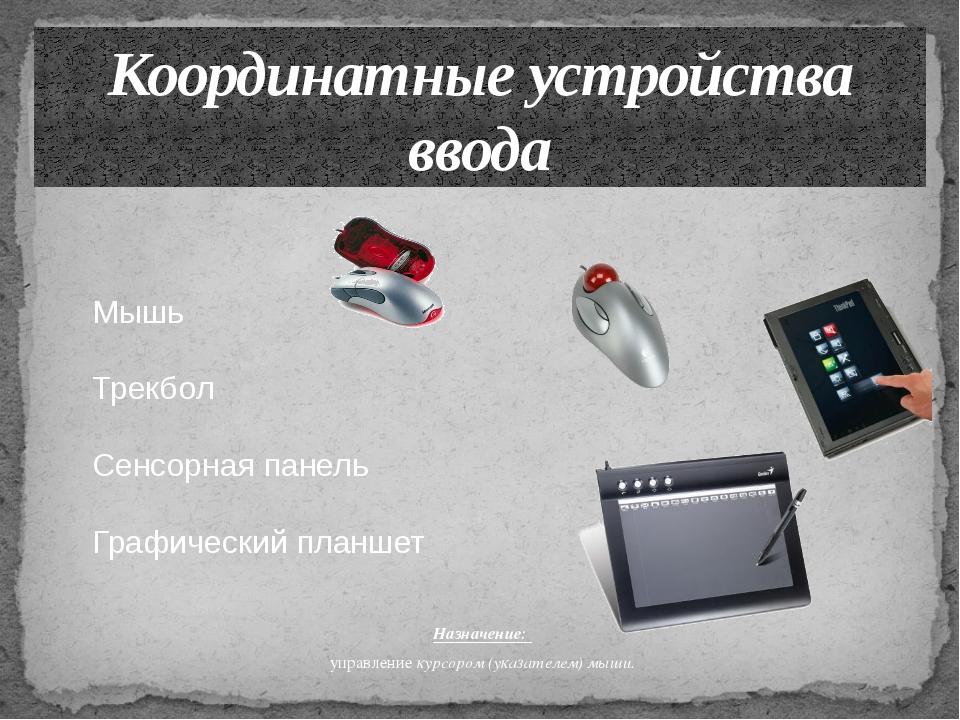 Назначение: управление курсором (указателем) мыши. Координатные устройства вв...