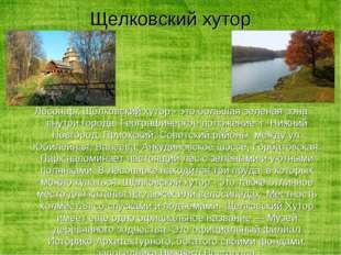 Лесопарк Щёлковский хутор - это большая зеленая зона внутри города. Географич