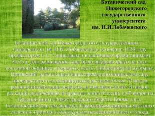 Ботанический сад Нижегородского государственного университета им. Н.И.Лобаче