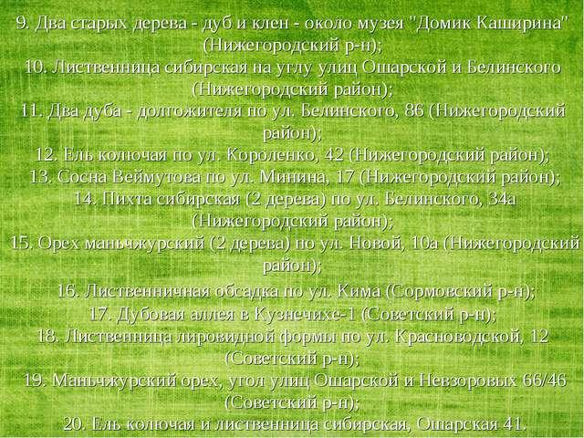 """9. Два старых дерева - дуб и клен - около музея """"Домик Каширина"""" (Нижегородск..."""
