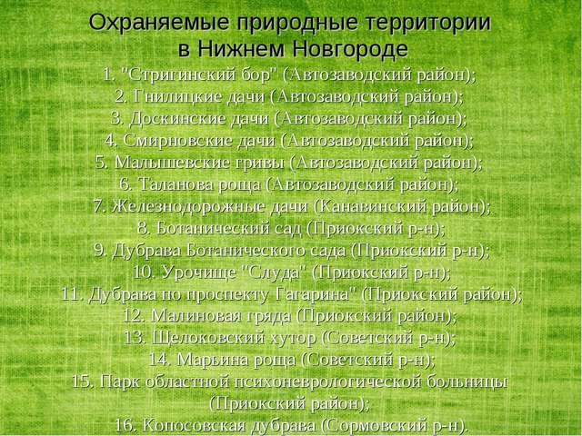 """Охраняемые природные территории в Нижнем Новгороде 1. """"Стригинский бор"""" (Авто..."""