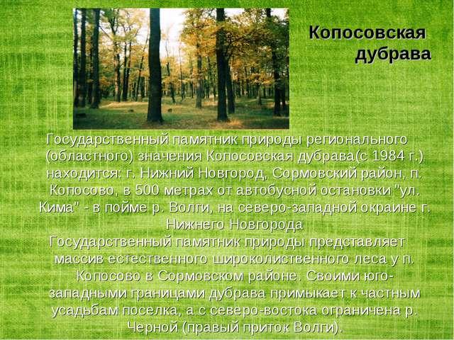 Копосовская дубрава Государственный памятник природы регионального (областног...