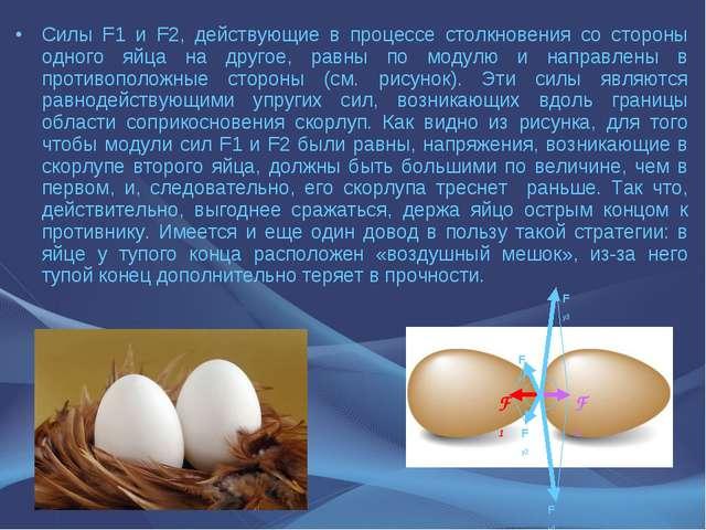 Силы F1 и F2, действующие в процессе столкновения со стороны одного яйца на д...