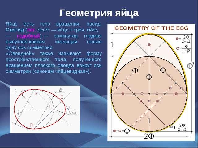 Геометрия яйца Яйцо есть тело вращения, овоид. Ово́ид(лат.ovum—яйцо+гре...