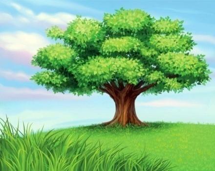 http://coloringhub.com/wp-content/uploads/2013/05/green-Tree.jpg