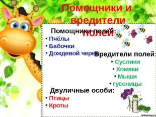 Помощники и вредители полей Помощники полей: Пчёлы Бабочки Дождевой червь Вре