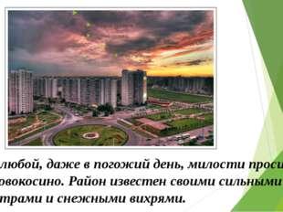В любой, даже в погожий день, милости просим у Новокосино. Район известен св