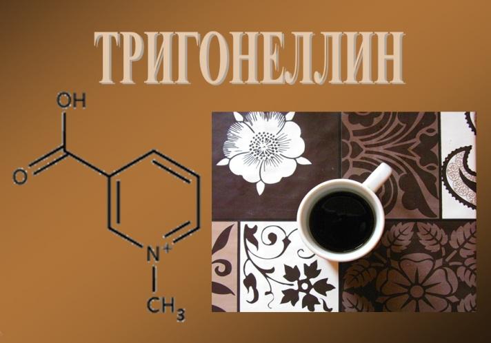 trigonellin