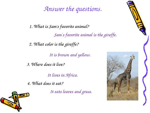 1. What is Sam's favorite animal? Sam`s favorite animal is the giraffe. 2. Wh...
