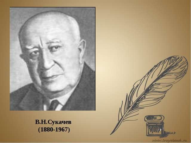 В.Н.Сукачев (1880-1967)