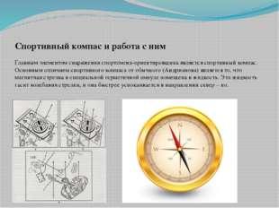 Спортивный компас и работа с ним Главным элементом снаряжения спортсмена-орие